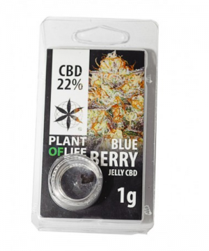 jelly cbd blueberry linda seeds