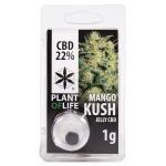 mango-kush-cbd-jelly-22%