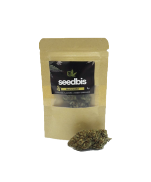 seedbis black mamba